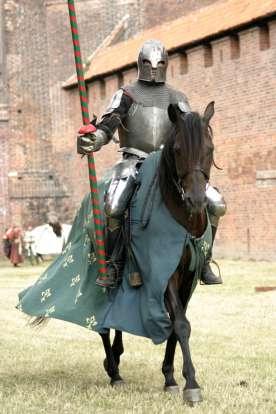 Ser Donnel